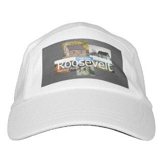 ABH Theodore Roosevelt NP Headsweats Hat