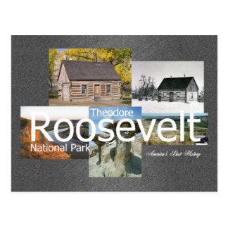 ABH Theodore Roosevelt NP Postcard