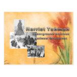 ABH Tubman National Monument Postcard