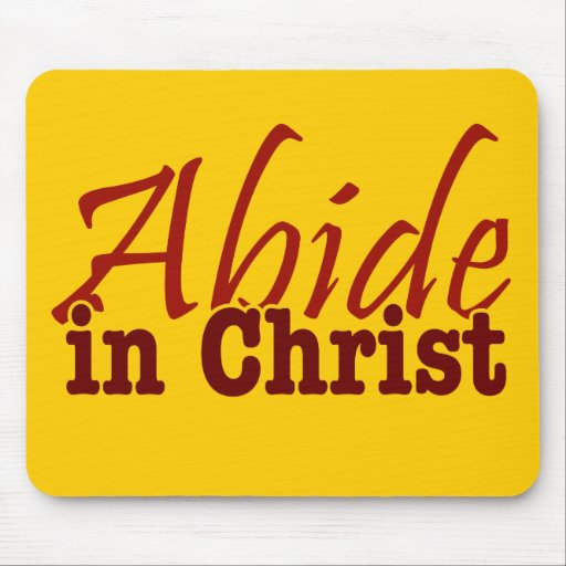 how to abide in christ pdf