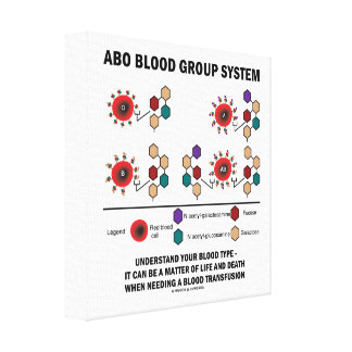 ABO Blood Group System Understand Blood Type Canvas Print