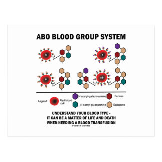 ABO Blood Group System Understand Blood Type Postcard
