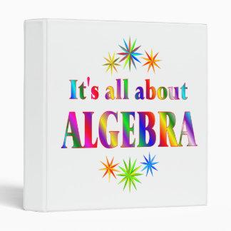 About Algebra Binder