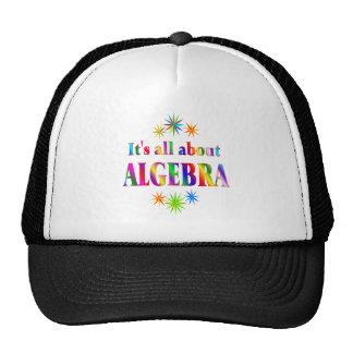 About Algebra Hats