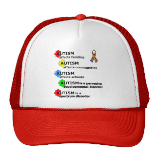 ABOUT AUTISM TRUCKER HAT