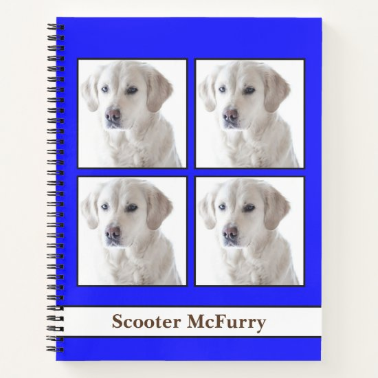 [About My Dog] Vet Records, Journal, & Brag Book