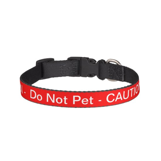 [About My Dog] Warning Alert Special Condition Pet Collar