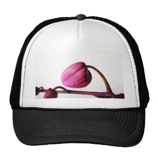 About to Bloom Trucker Hats