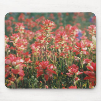 Above The Crowd Mouse Pad