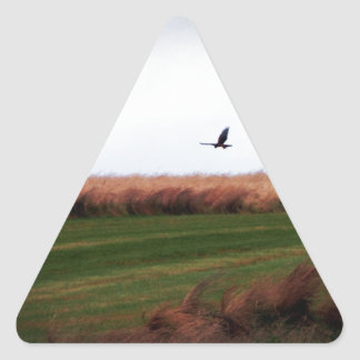 Above The Hope Triangle Stickers