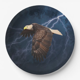 ABOVE THE STORM PAPER PLATE