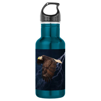ABOVE THE STORM STAINLESS STEEL WATER BOTTLE