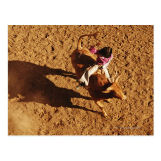 Above View of a Cowboy Riding a Bull Postcard