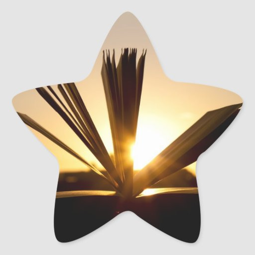 Abra el libro y la fotografía de la puesta del sol pegatina en forma de estrella