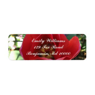 Abra el rosa rojo etiqueta de remitente