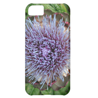 Abra la flor de la alcachofa. Púrpura