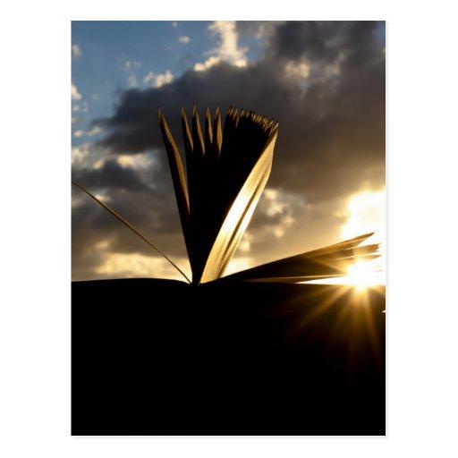 Abra la fotografía del libro y de la puesta del so postal