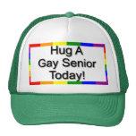 """""""Abrace a un mayor gay """" Gorra"""