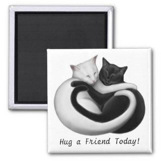 Abrace un imán de los gatos del amigo