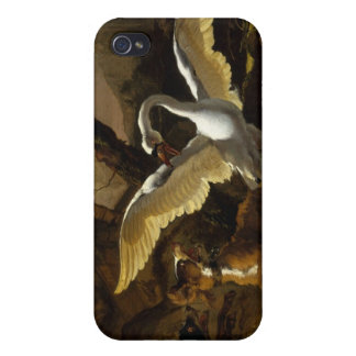 Abraham Hondius - A Swan Enraged Cases For iPhone 4