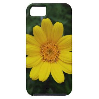Ábrase para amar la manzanilla amarilla iPhone 5 Case-Mate cobertura