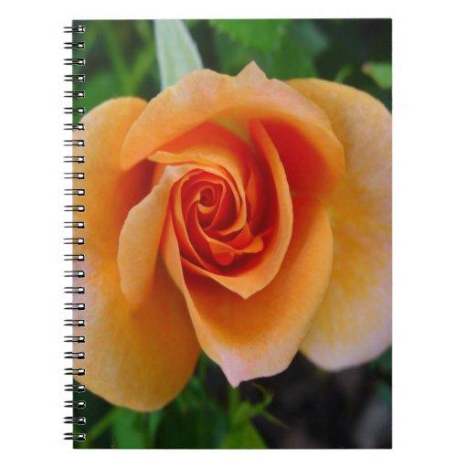 Ábrase para la floración subió amor cuadernos