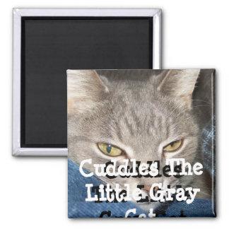 Abraza el pequeño imán gris del cuadrado del gato