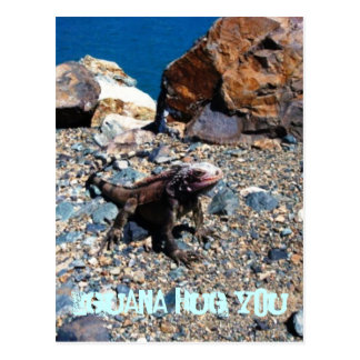 Abrazo de la iguana usted postales