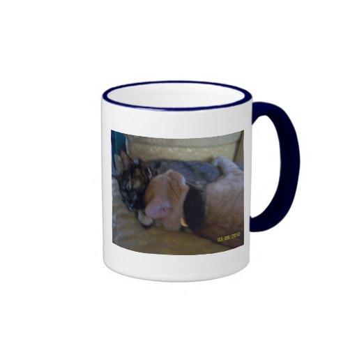 Abrazo de la taza de los gatitos