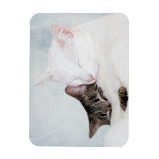 Abrazo del gatito imanes de vinilo