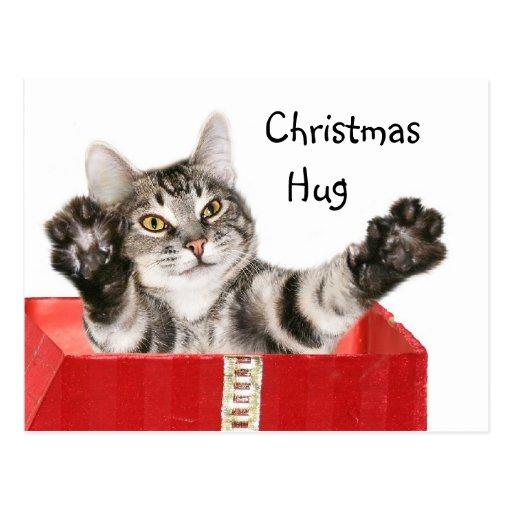 Abrazo del navidad del gatito postales