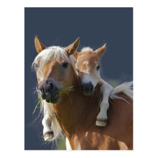 Abrazos del bebé tarjetas postales