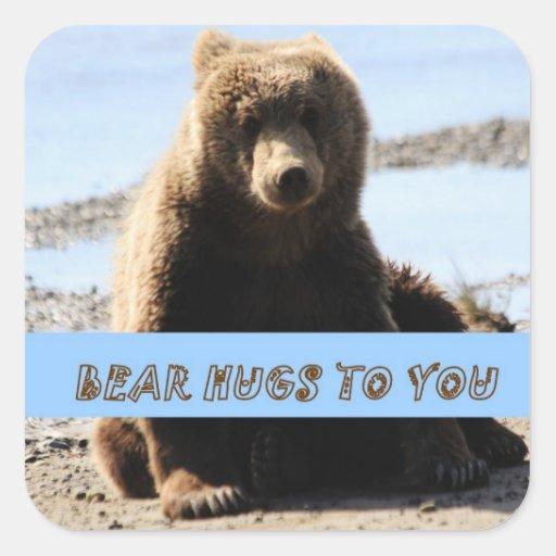 Abrazos del cachorro de oso de Brown a usted pegat