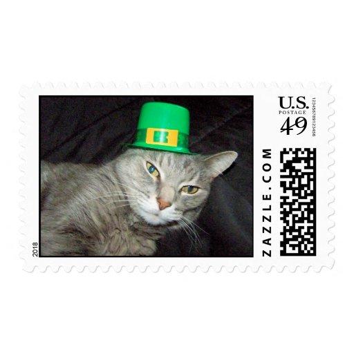 Abrazos del gato que llevan el franqueo del gorra