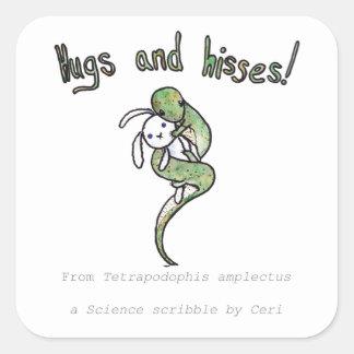 Abrazos y silbidos de una serpiente legged cuatro pegatina cuadrada