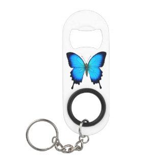 Abrebotellas azul de la mariposa de Papilio Ulises