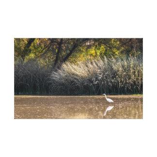 Abrigo de la lona: Caza del Egret en la charca 2 Lona Envuelta Para Galerías