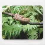 Abrigo de la serpiente de la selva tropical - mous tapete de ratón