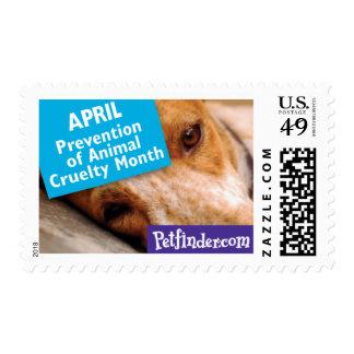 ABRIL - prevención del mes animal de la crueldad Franqueo