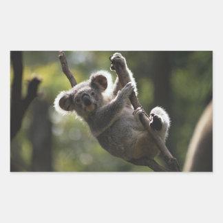 Absolutely Adorable Koala Bear Rectangle Sticker