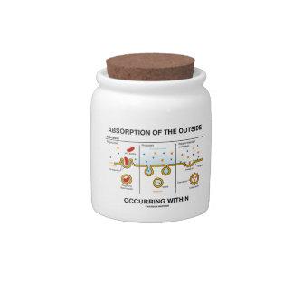 Absorción del exterior que ocurre dentro jarra para caramelo
