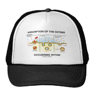 Absorption Of The Outside Occurring Within Trucker Hat