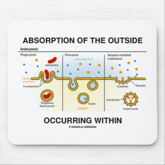 Absorption Of The Outside Occurring Within Mouse Pad
