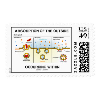 Absorption Of The Outside Occurring Within Postage