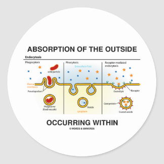 Absorption Of The Outside Occurring Within Round Sticker