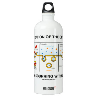 Absorption Of The Outside Occurring Within Water Bottle