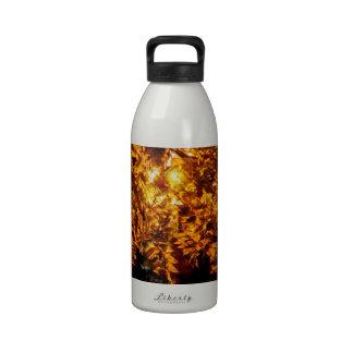 Abstracción del otoño botellas de agua reutilizables