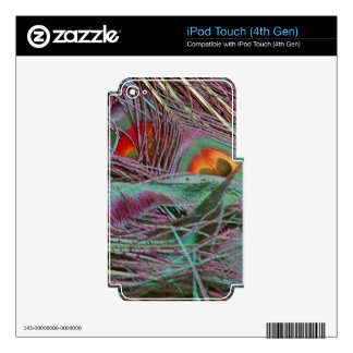 Abstract 70s Peafowl Decal For iPod Touch 4G