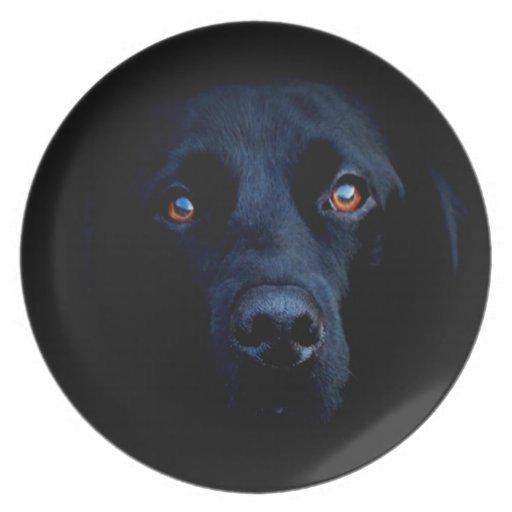 Abstract Animal Dark Dog Dinner Plates