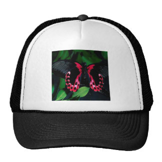 Abstract Animal Elegant Butterfly Trucker Hat